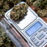 digital weed scales